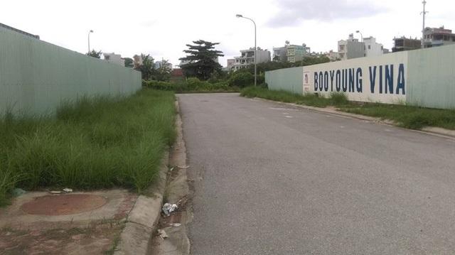 Cả phía ngoài lẫn bên trong dự án đều chỉ thấy cỏ mọc, rác thải....
